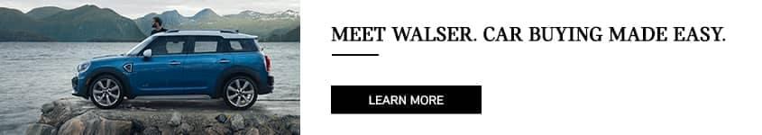 Meet_Walser