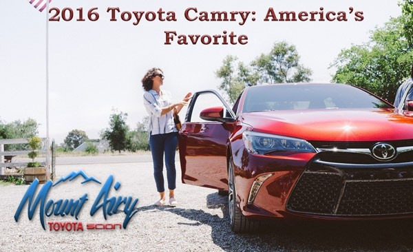 Camry Favorite