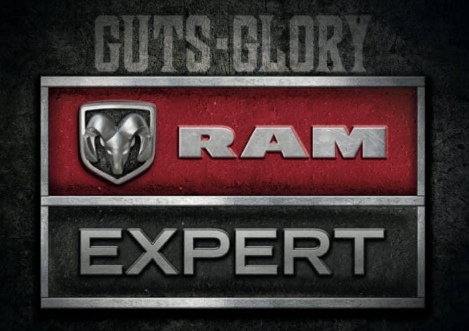 Ram Expert