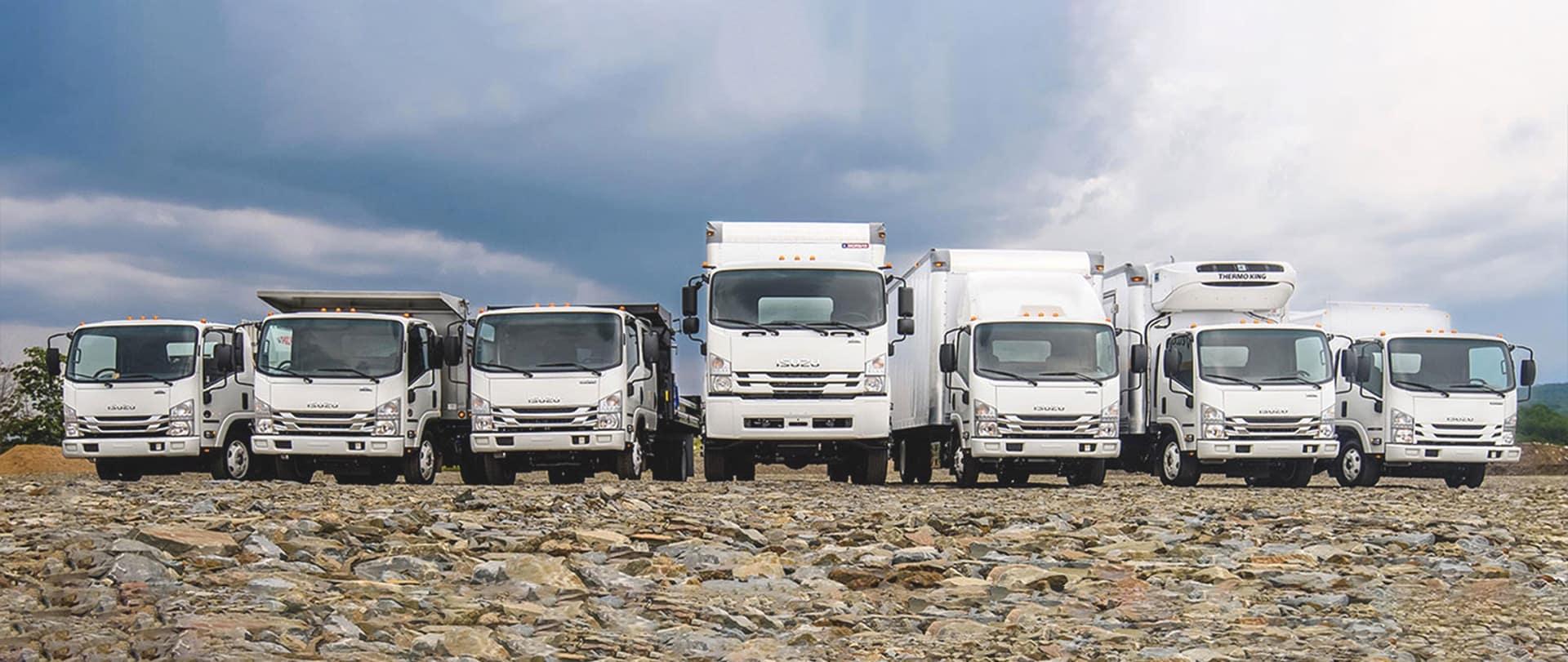 A row of Isuzu trucks