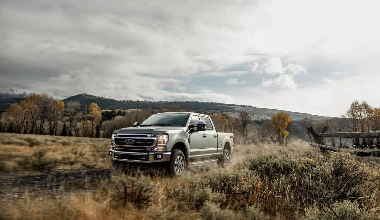 Ford Truck in Meadow
