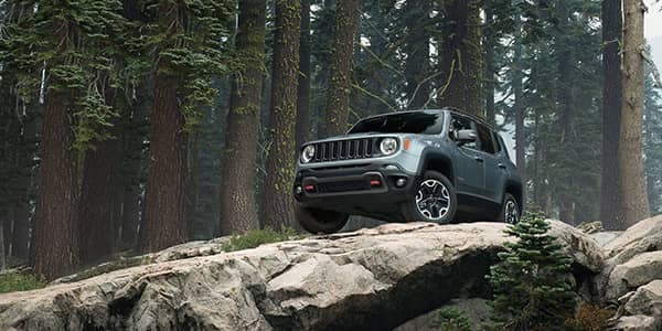 2017-Jeep-Renegade-Gallery-Trailhawk-Glacier-Metallic.jpg.image.2880