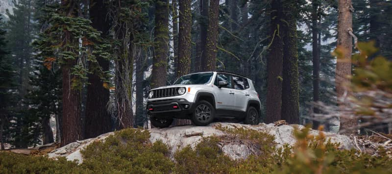 2018 Jeep Renegade in silver parked on snowy lookout in a forest
