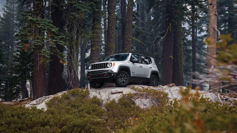 2019 Jeep Renegade on cliff