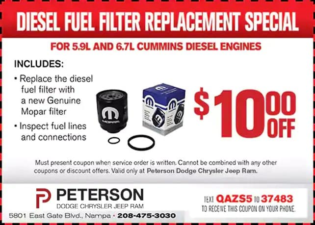 Diesel Fuel Filter Replacement Special