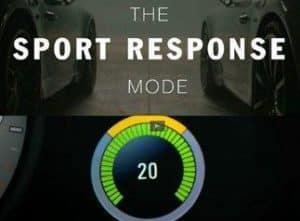 Sport Response