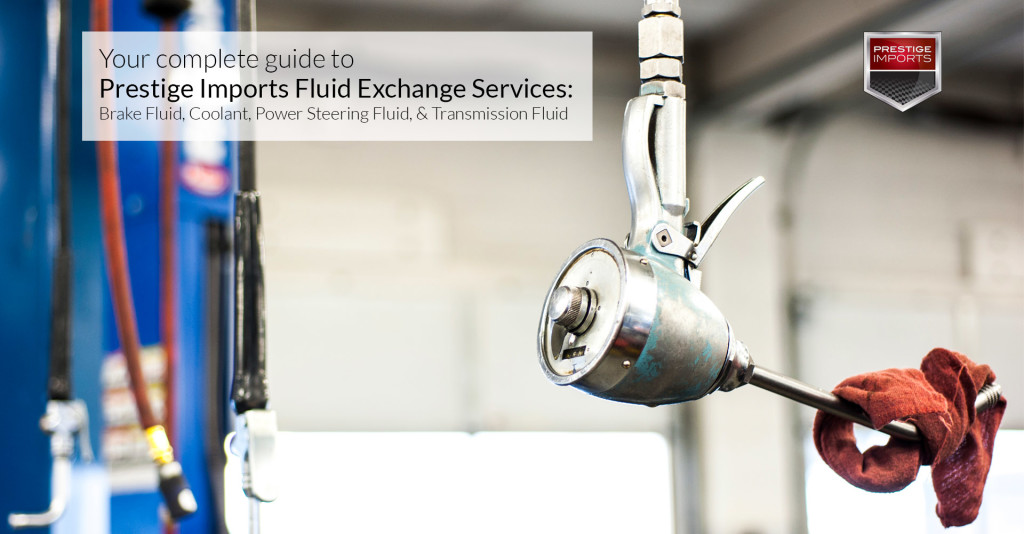 Complete guide to Porsche and Audi Fluid Exchange Services