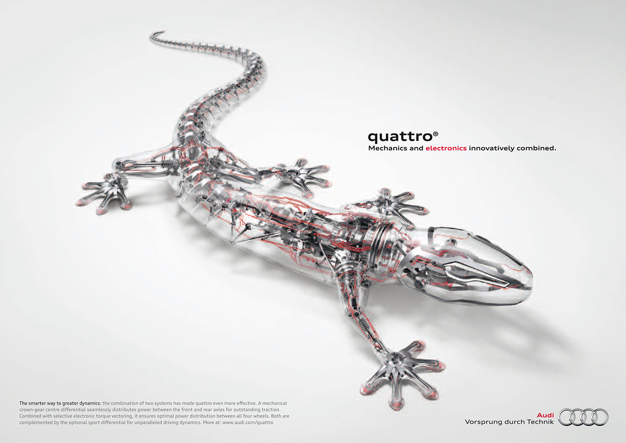 Audi gecko logo and audi quattro what is the link 30th anniversary audi gecko biocorpaavc Gallery