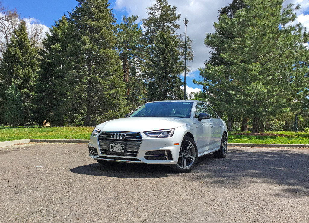 The all new 2017 Audi A4 parked near a stand of evergreen trees in the Cheesman Park neighborhood of Denver, CO