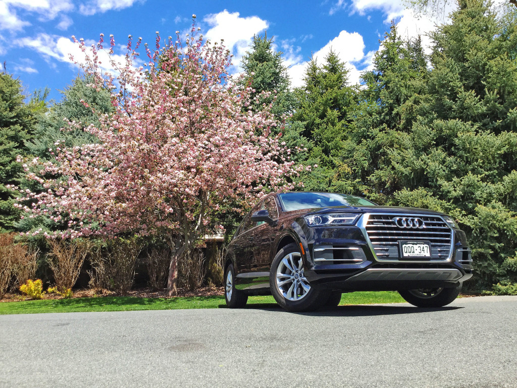 An Audi Q7 foregrounded against a cherry blossom tree in Cherry Hills Village, Colorado.