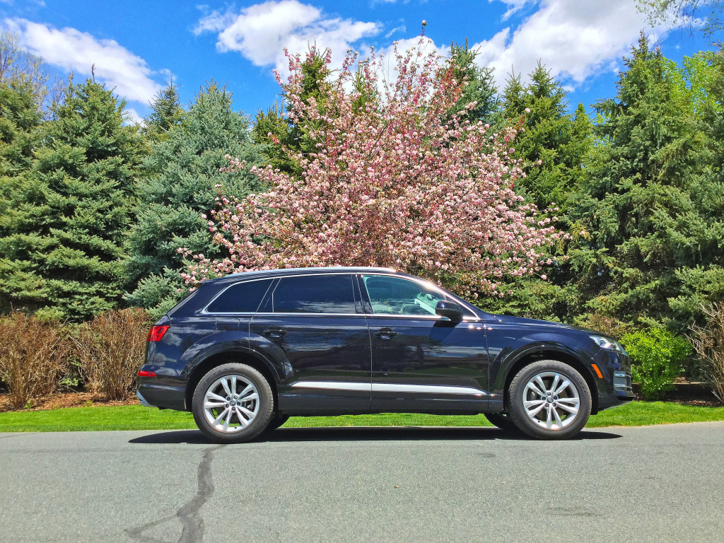 The side view of an Audi Q7 parked in front of a cherry blossom tree on Meade Lane in Cherry Hills Village, CO