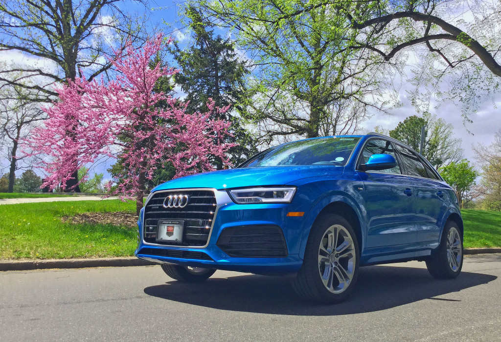 Audi Q3 in Hainan Blue metallic parked in front of a tree in full bloom in Denver's Washington Park neighborhood.