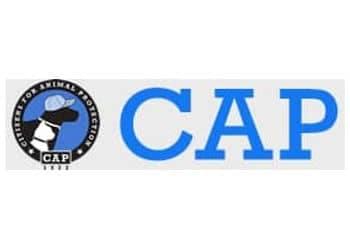 Cap logo for value partners