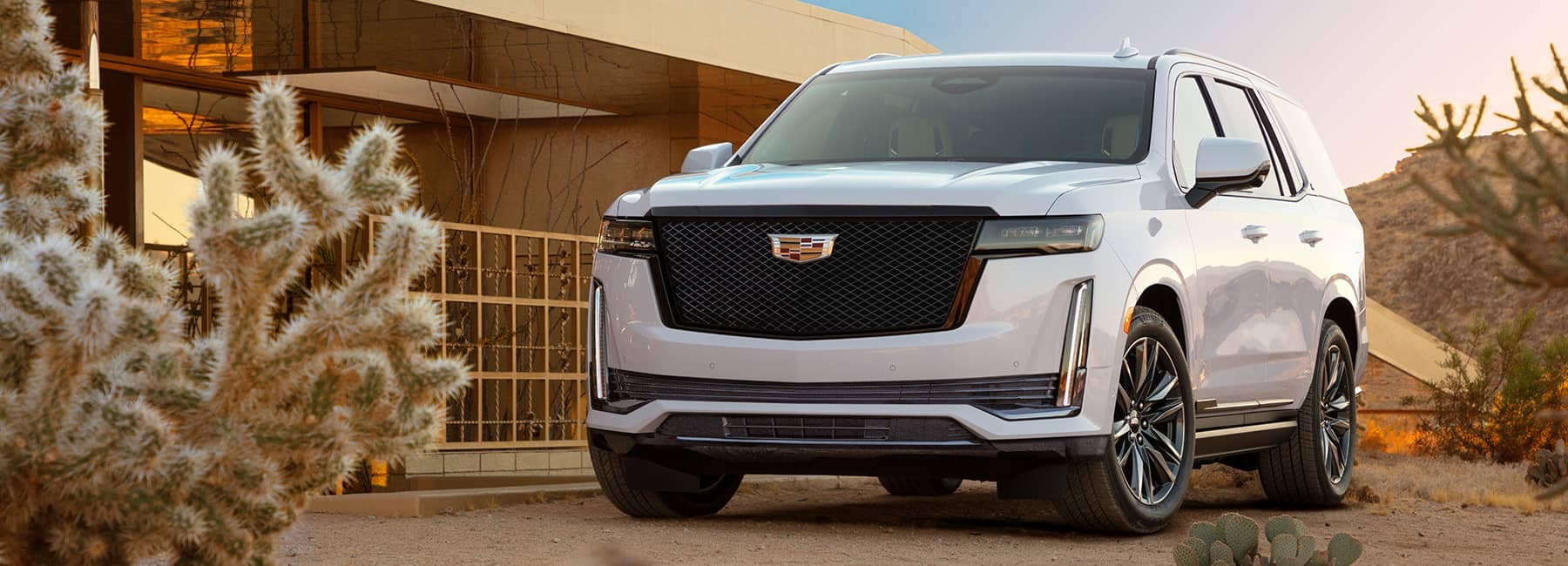 White 2021 Cadillac Escalade parked outside of a house in the desert
