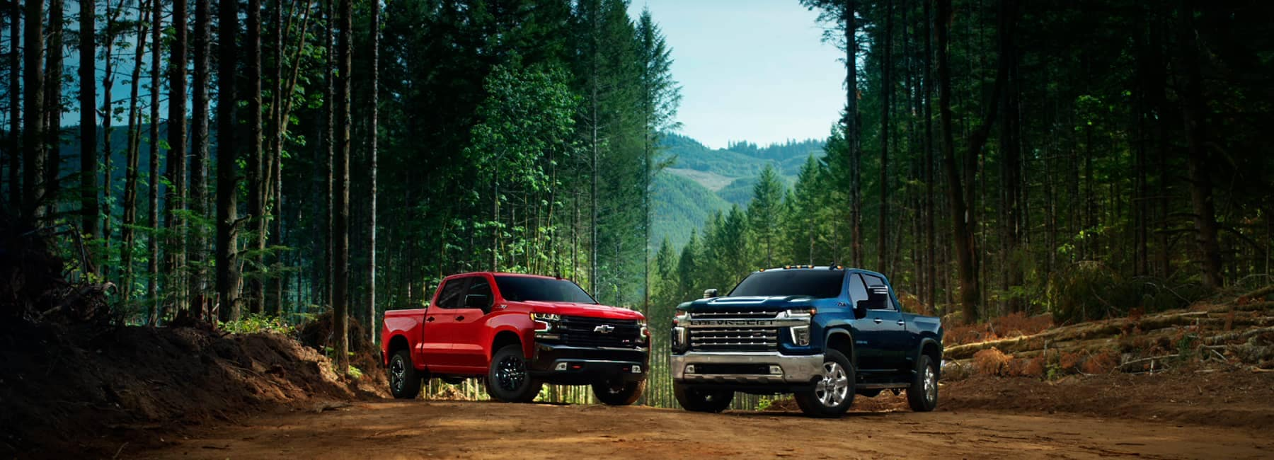 2021 Chevrolet Silverado Lineup - A Red and a Blue Chevrolet Silverado in a wooded area facing the camera