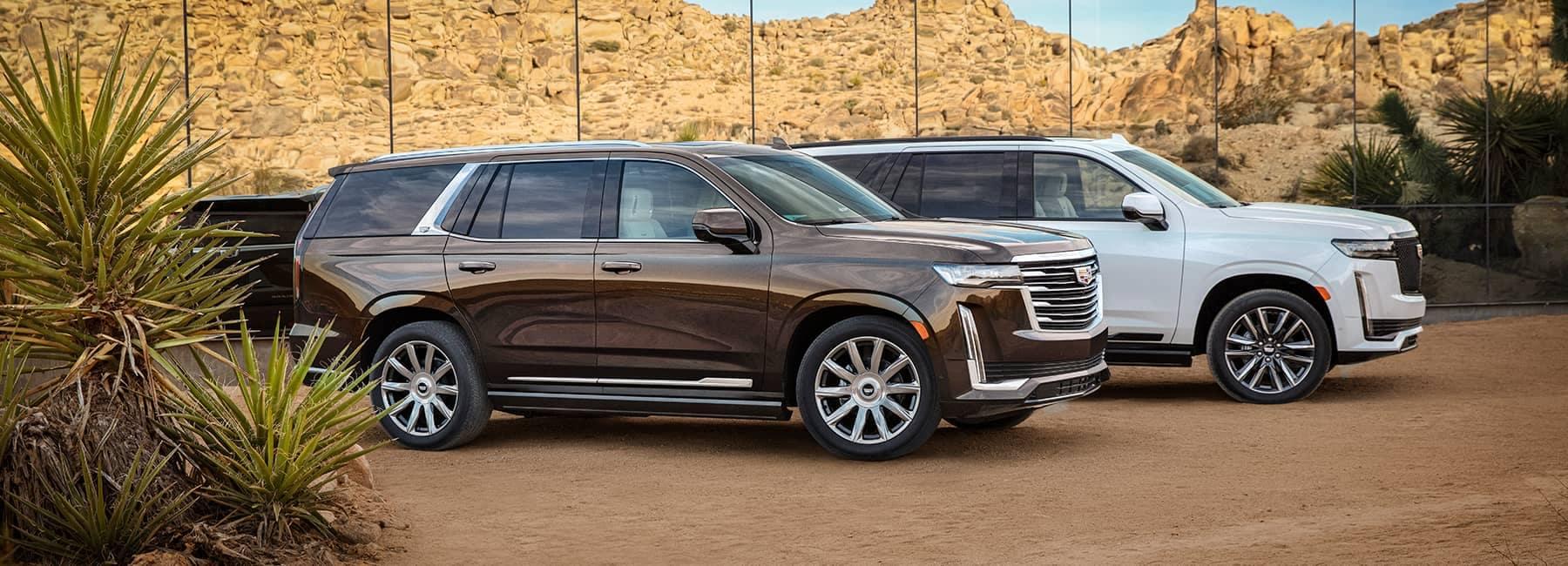 2021 Cadillac Escalade parked in a row