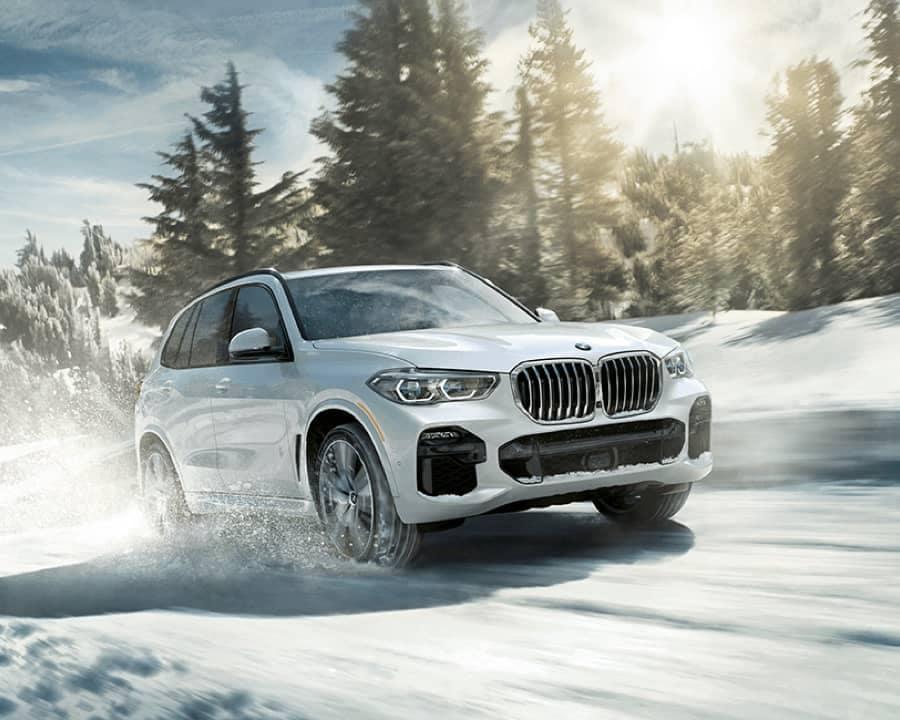 2019 BMW X5 Snow