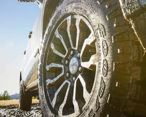 EXCLUSIVE AT4 OFF-ROAD TIRES