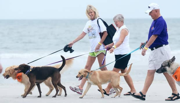 picture of three people walking dogs on the beach