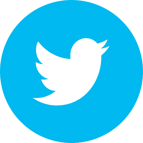 Twitter Page Logo