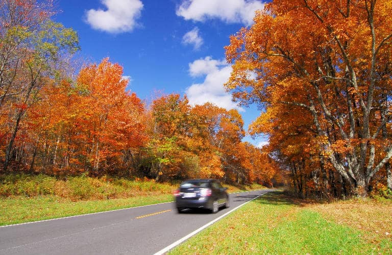 car_driving_in_fall_768x500_b