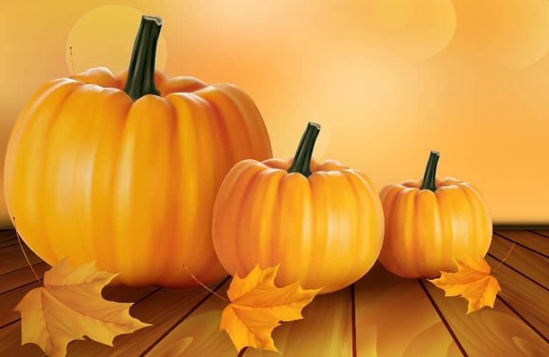 pumpkins_in_a_row_768x500_o