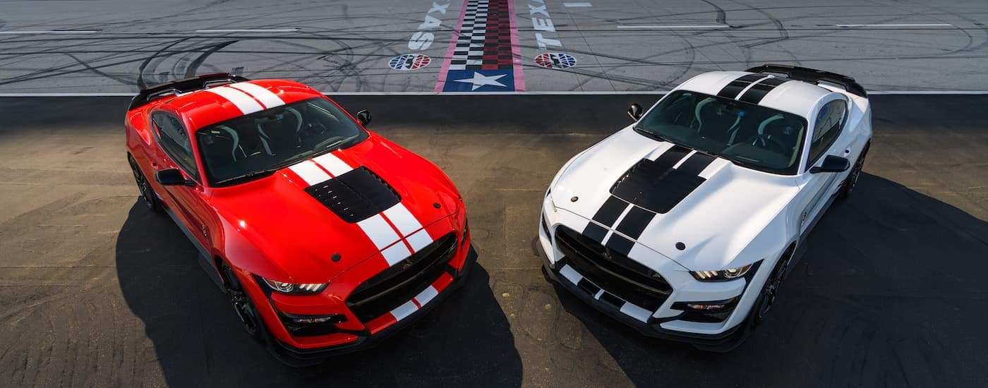 One of the most popular Ford performance vehicles, a red and a white 2021 Ford Mustang Shelby GT500, are shown from a high angled parked at a race track.