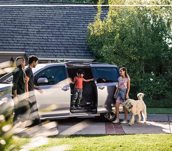 Toyota-lifestyle-dog