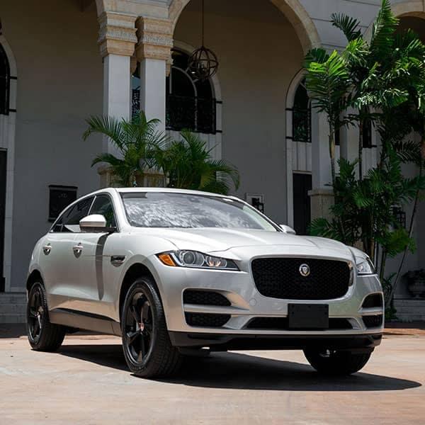 Jaguar-1-600x600