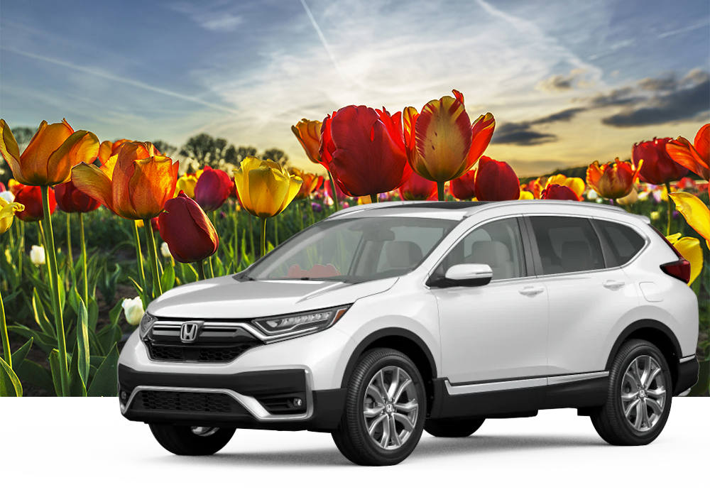 Orange City, IA Tulip Honda CR-V Image