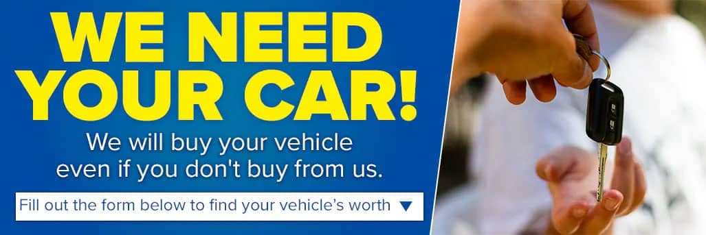 We-Need-Your-Car