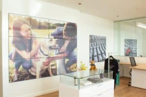 Large Pictures and display