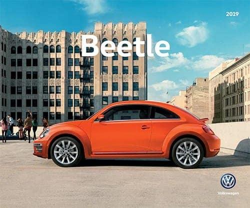 beetle brochure