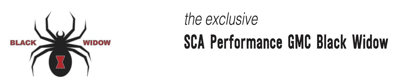 SCA-Performace-Banner